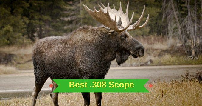 Best .308 Scope
