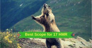 Best Scope for 17 HMR