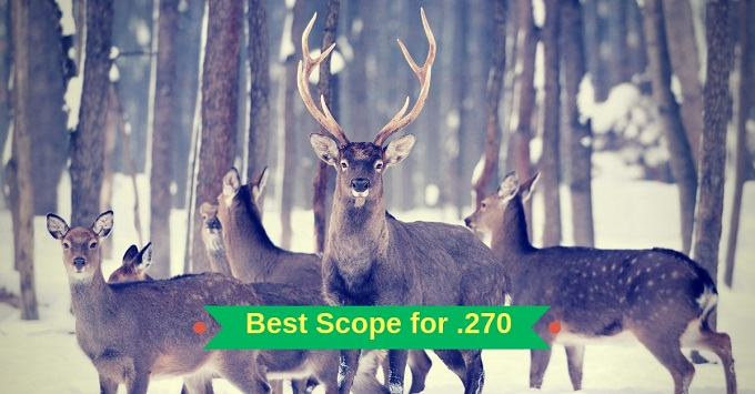 Best scope for 270 #6