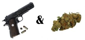 guns and marijuana